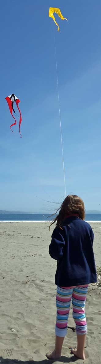 Chloe accepts an invitation to fly a kite