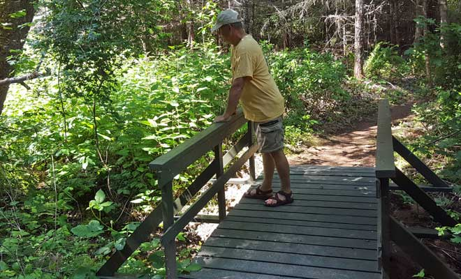 Dale on one of the many bridges on the trail