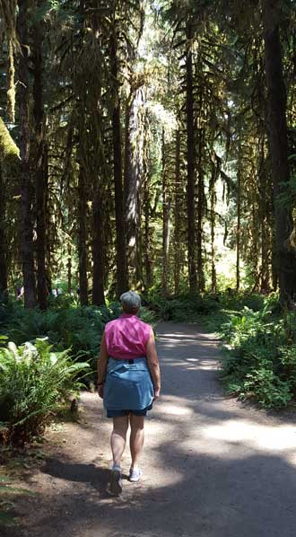 At the Hoh Rain Forest
