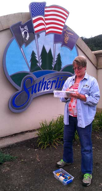 Gwen finds a cache at the Sutherlin town sign