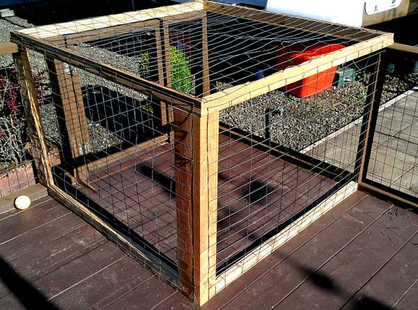 A cat cage on the deck