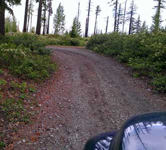 In search of dispersed camping on forest service roads