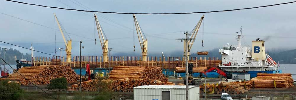 Logs loaded for export to China