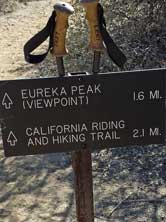 "The trail continues, Behind: The peak is in view, the ""Y"" Joshua Tree at the top of the paek is the summit"