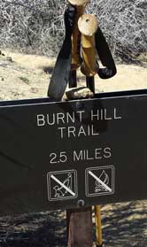 Burnt Hill, my return trail passed on the way to the summit, Behind: On the summit overlooking Yucca Valley, CA
