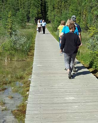 The wood walkway to the Liard Hot Spring