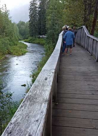 Looking for bears at Fish Creek but finding only dead and dying fish and the Hyder, Alaska post office