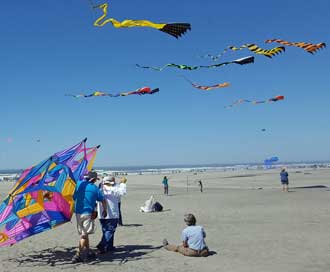 Turns out an international kite festival is happening in Long Beach