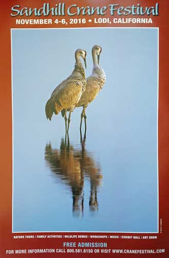 The Sandhill Crane Festival is an annual event in Lodi