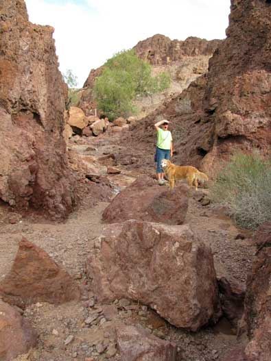 We hike the Painted Desert Trail in the Imperial National Wildlife Refuge