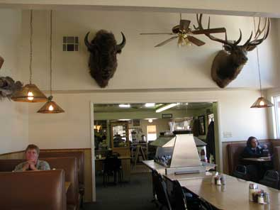 Animals hanging on the walls in Largo Cafe