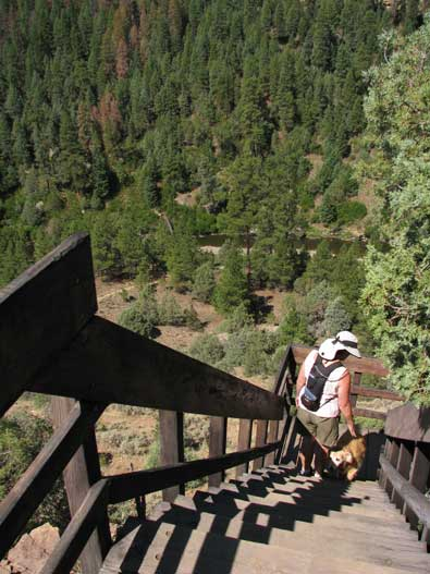 The Rio Chama trail begins at a set of stairs off a short cliff from the top.