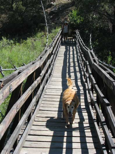 At the lowest point of the trail is the suspension bridge over Rio Chama