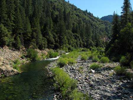 North Yuba River as it flows into Rocky Rest Campground
