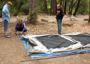 Gwen, Courtney and Lesa start to assemble a tent in our back yard