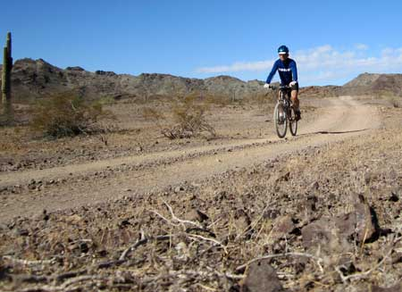 Mountain bike riding in the Arizona desert