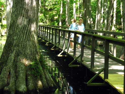 Janet and Gwen crossing the bridge over Cypress Swamp