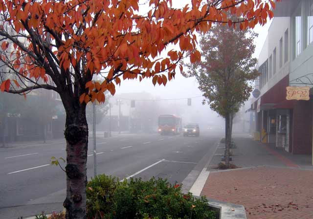 Fog in Downtown Medford
