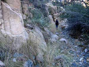 A wash in the Cochise Stronghold