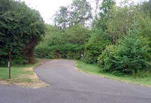 Silver Falls State Park RV space with privacy